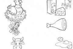 atividades-alimentação-saudavel-exercicios-educação-infantil-ensino-fundamental (54)