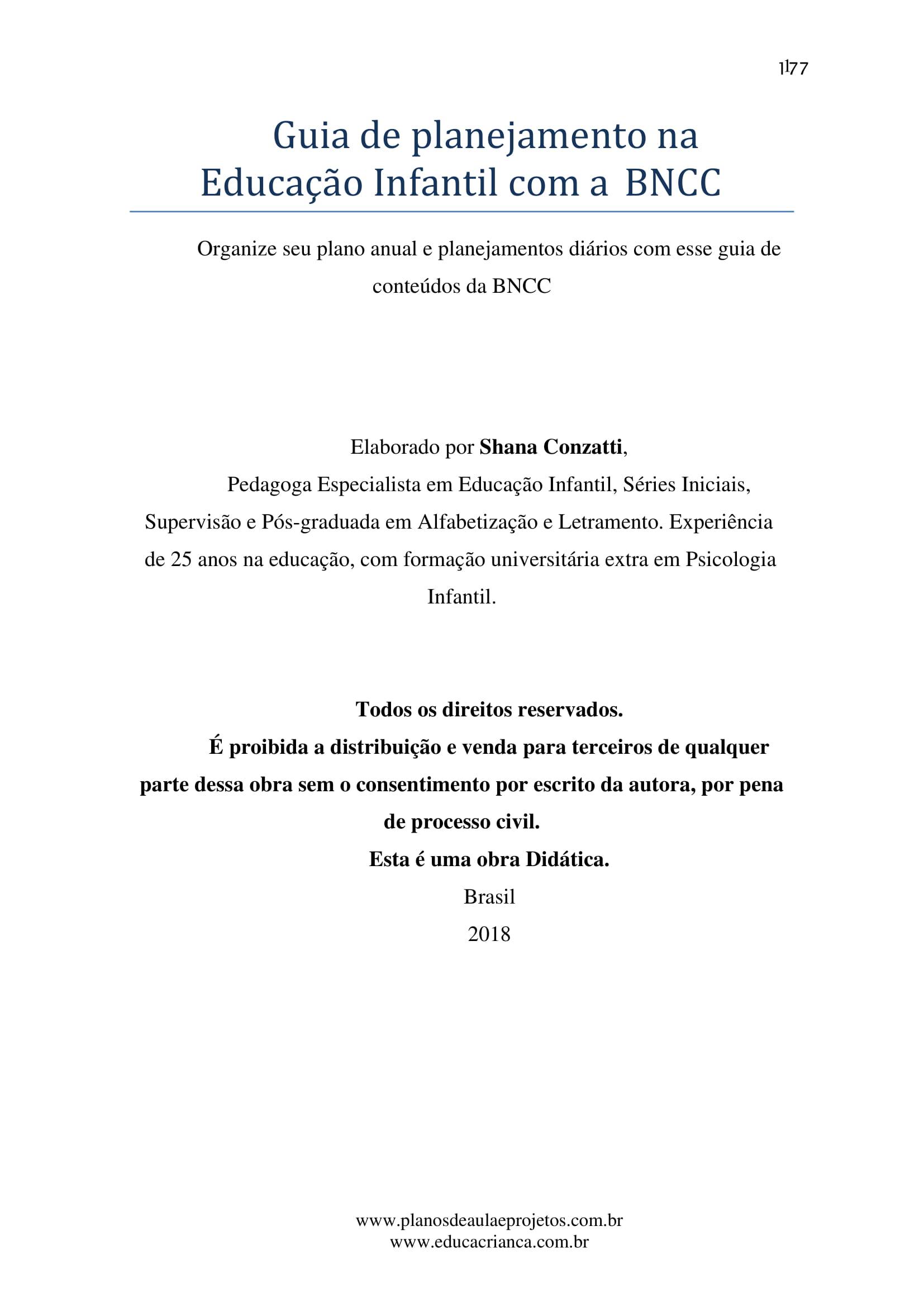 planejamento-educação-infantil-bncc-geral-207