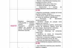 planejamento-educação-infantil-bncc-geral-19