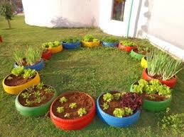 Atividades Educação Infantil Meio Ambiente